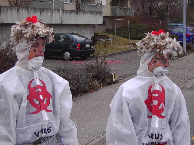2006-02-22-sf-fasnacht-stallpflicht-015