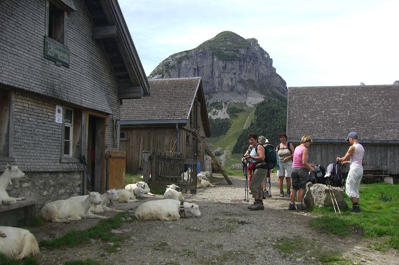2007-08-25-ff-bergtour-013