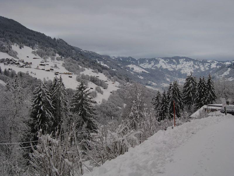2008-01-11-sf-skiweekend-saas-043