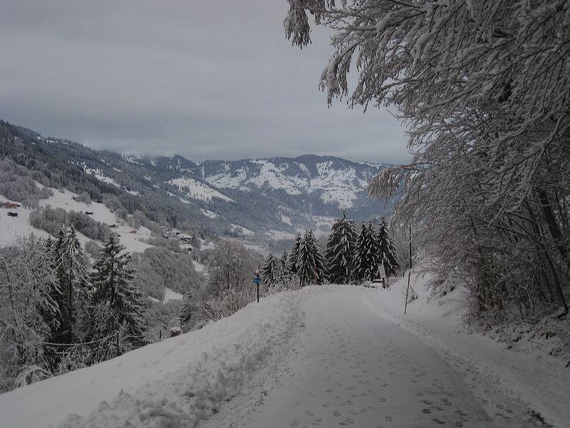 2008-01-11-sf-skiweekend-saas-051
