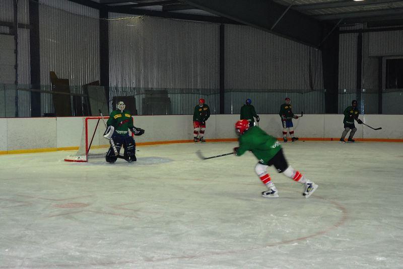2008-04-08-sf-hockey-wetzikon-036