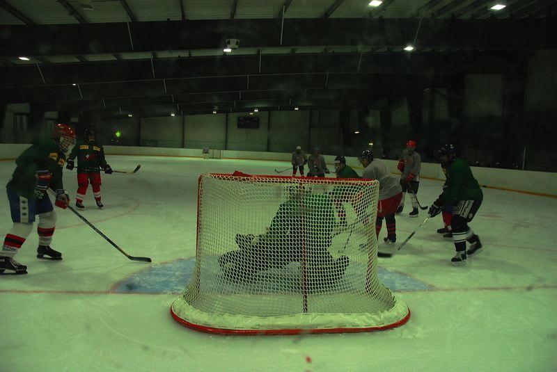 2008-04-08-sf-hockey-wetzikon-045
