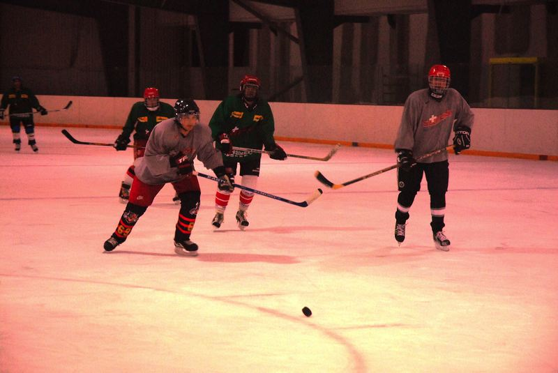 2008-04-08-sf-hockey-wetzikon-048
