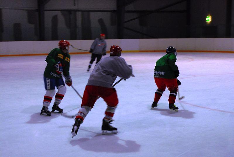 2008-04-08-sf-hockey-wetzikon-053