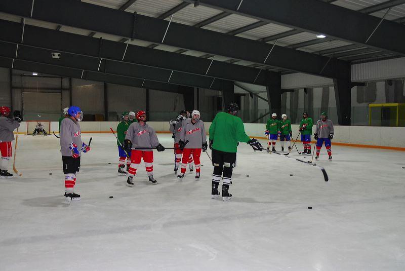 2009-04-07-sf-hockey-wetzikon-044