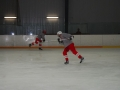 2009-04-07-sf-hockey-wetzikon-047