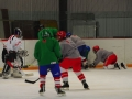 2009-04-07-sf-hockey-wetzikon-085