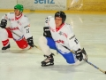 2010-03-23-sf-hockey-wetzikon-045