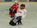 2010-03-23-sf-hockey-wetzikon-049