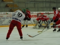 2010-03-23-sf-hockey-wetzikon-115
