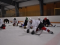 2011-03-29-sf-hockey-wetzikon-039