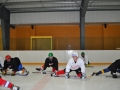 2011-03-29-sf-hockey-wetzikon-040