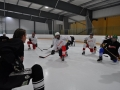2011-03-29-sf-hockey-wetzikon-043