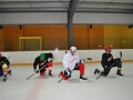 2011-03-29-sf-hockey-wetzikon-045