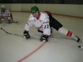 2012-03-25-sf-hockey-wetzikon-010
