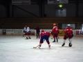2007-03-27-sf-hockey-wetzikon-036
