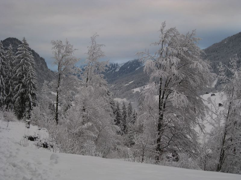 2008-01-11-sf-skiweekend-saas-052