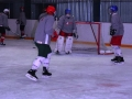 2008-04-08-sf-hockey-wetzikon-037