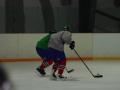 2009-04-07-sf-hockey-wetzikon-087