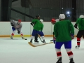 2009-04-07-sf-hockey-wetzikon-115