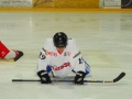 2010-03-23-sf-hockey-wetzikon-041
