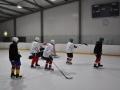 2011-03-29-sf-hockey-wetzikon-037