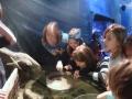 2011-11-20-jrj-sea-life-konstanz-044