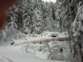 2012-01-07-sf-skiweekend-saas-001