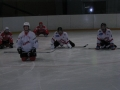 2012-03-25-sf-hockey-wetzikon-007