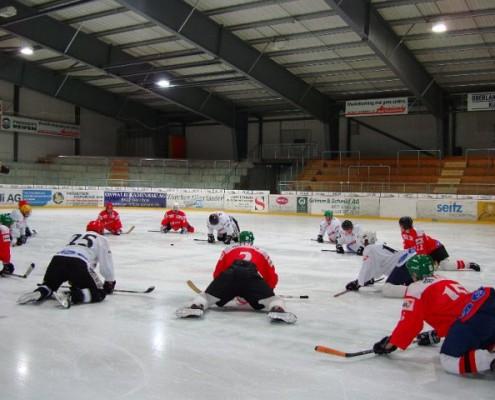 2010-03-23-sf-hockey-wetzikon-030